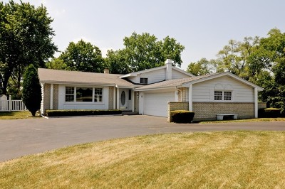 Palatine Single Family Home New: 1152 North Perry Drive