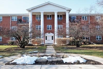Arlington Heights IL Condo/Townhouse New: $142,500