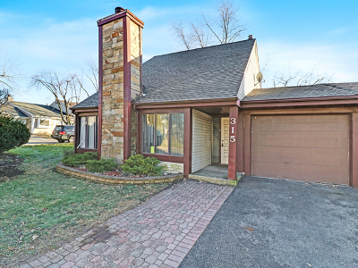Romeoville Single Family Home New: 315 Elmwood Road