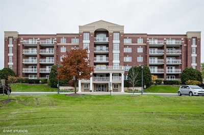 Niles Condo/Townhouse New: 7041 West Touhy Avenue #602