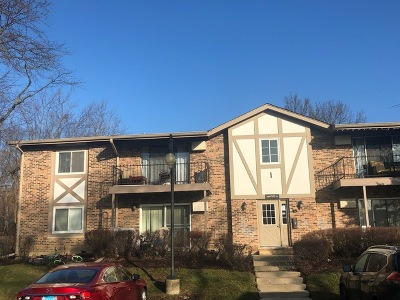 Willowbrook Condo/Townhouse New: 16w575 79th Street #1A-201