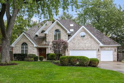 Hinsdale Single Family Home New: 917 Allmen Avenue