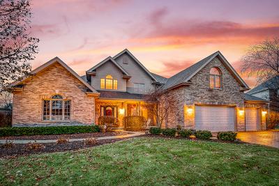Frankfort Single Family Home New: 22380 Prairie Trail Lane