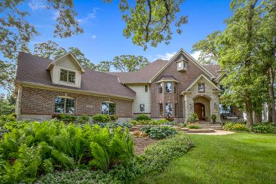 Elgin Single Family Home For Sale: 41w050 Stoneridge Lane