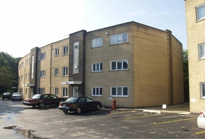 Hickory Hills IL Condo/Townhouse For Sale: $114,900