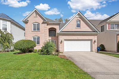Elmhurst Single Family Home For Sale: 425 Dorchester Avenue
