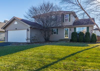 Plainfield Single Family Home New: 4508 Oriole Lane