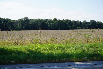 Wilmington Residential Lots & Land For Sale: Sec 20 Twp 32n, R 10e