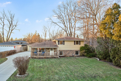 Palos Heights, Palos Hills Single Family Home New: 10106 South 80th Court