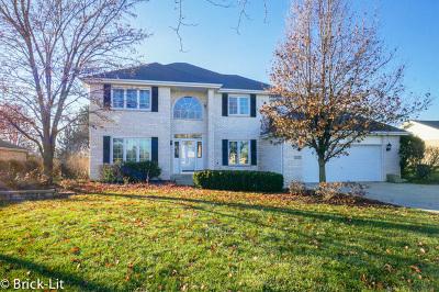 New Lenox Single Family Home For Sale: 1355 Hickory Creek Drive