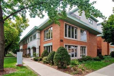 Oak Park Condo/Townhouse For Sale: 601 South Boulevard #F