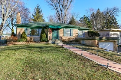 Barrington  Single Family Home For Sale: 739 Dundee Avenue