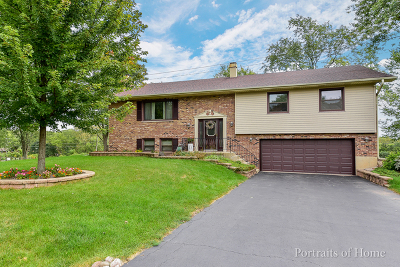 Lisle Single Family Home For Sale: 400 Cliff Court