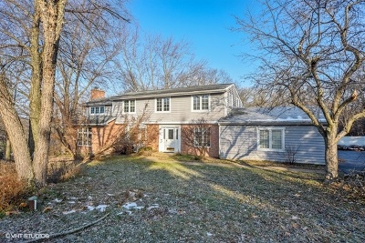 Barrington  Single Family Home For Sale: 26072 West Indian Trail Road