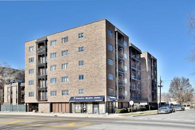 Elmwood Park Condo/Townhouse For Sale: 7904 West North Avenue #U602