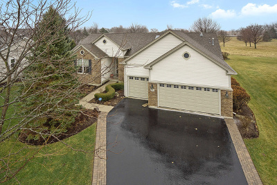 Huntley Single Family Home For Sale: 13167 Stone Creek Court