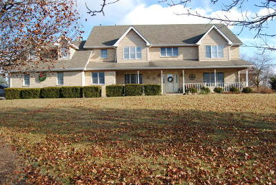 Du Page County, Kane County, Kendall County, Will County Single Family Home For Sale: 22459 South Spencer Road