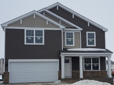 Oswego Single Family Home For Sale: 110 Linden Drive