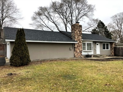 Tinley Park Single Family Home For Sale: 6530 Vogt Street