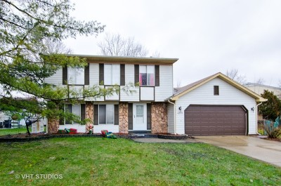 Elgin Single Family Home For Sale: 1255 Leawood Drive