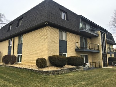 Palos Hills Condo/Townhouse For Sale: 11100 South 84th Avenue #1A