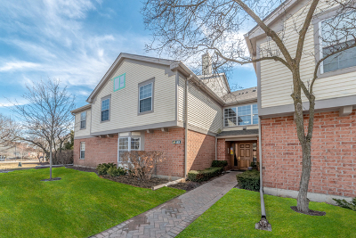 Schaumburg Condo/Townhouse For Sale: 133 Idle Wild Court #8