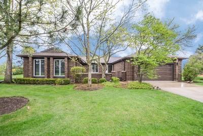 Northbrook Single Family Home For Sale: 4504 Lindenwood Lane
