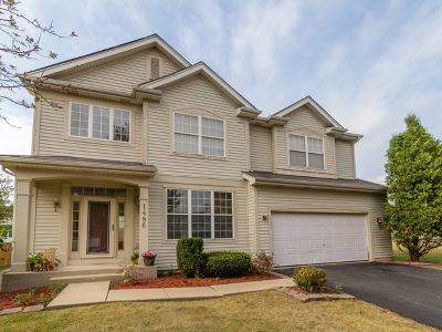 Bolingbrook Single Family Home For Sale: 1486 Schafer Avenue