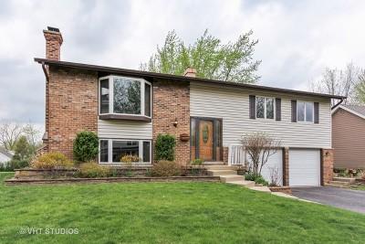 Hoffman Estates Single Family Home For Sale: 3970 Hudson Drive