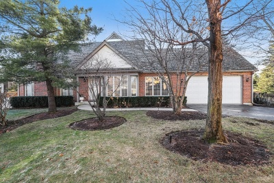 Lake Forest Condo/Townhouse New: 1144 Lynette Drive