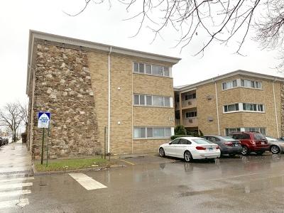 Elmwood Park Condo/Townhouse For Sale: 7201 West Wellington Avenue #A1