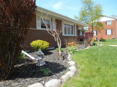 Crete Single Family Home For Sale: 3470 Haweswood Drive