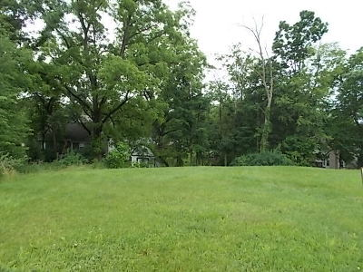 Bartlett Residential Lots & Land For Sale: 427 Pond View Lane