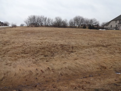 Huntley Residential Lots & Land For Sale: 11618 Strawberry Lane