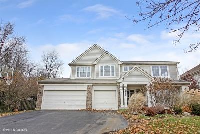 Lisle Single Family Home For Sale: 5380 Burnham Street