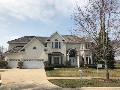 Northbrook Single Family Home For Sale: 3234 Glenbrook Drive