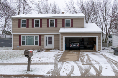 Schaumburg Single Family Home For Sale: 2105 Parkville Road