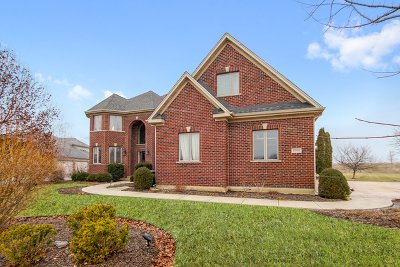 Hampshire Single Family Home For Sale: 46w548 West Woodview Parkway