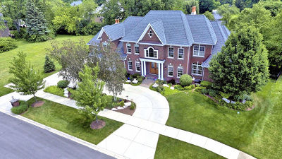 Naperville Single Family Home For Sale: 1212 Tranquility Court