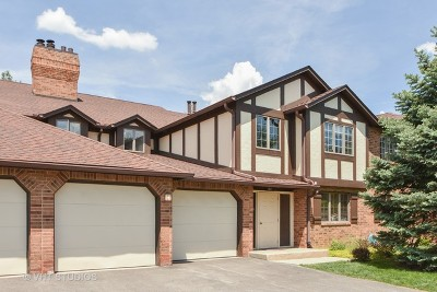 Palos Heights Condo/Townhouse For Sale: 7812 West Golf Drive #2B