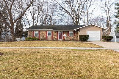 Palatine Single Family Home For Sale: 354 North Wilke Road