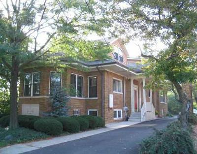Wheaton Commercial For Sale: 402 East Roosevelt Road