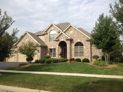 Geneva Single Family Home For Sale: 832 Sunflower Drive