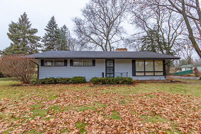 Elgin Single Family Home For Sale: 962 Oakdale Drive