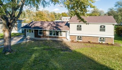Glen Ellyn Single Family Home Price Change: 2n241 Diane Avenue