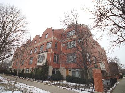 Oak Park Condo/Townhouse New: 105 South Euclid Avenue #B