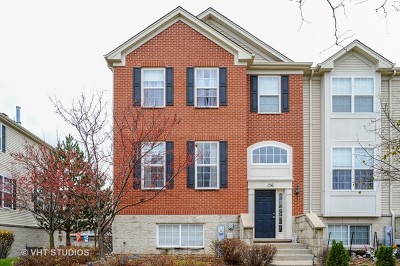 Gilberts Condo/Townhouse For Sale: 156 Town Center Boulevard