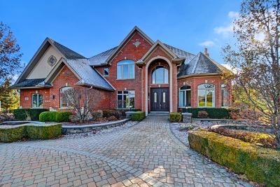 Homer Glen Single Family Home For Sale: 15403 West Wheatstone Drive
