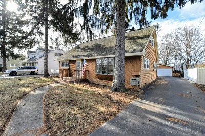 Grayslake Single Family Home New: 362 Behm Drive