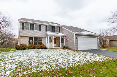 Hampshire Single Family Home For Sale: 303 Julie Lane